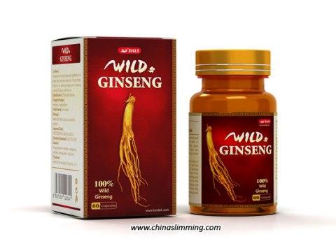 Wild_Ginseng
